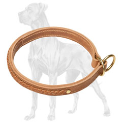 Great Dane leather choke collar with brass plated fittings
