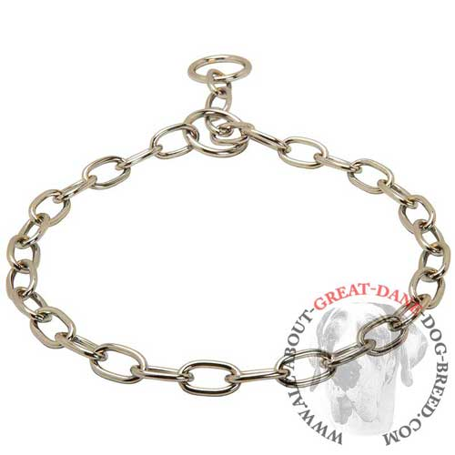 Choke chain collar for Great Dane with polished links