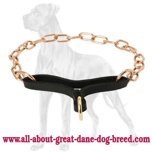 Martingale collar with leather part for Great Dane