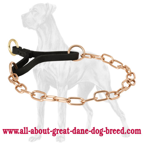 Curogan martingale collar for Great Dane