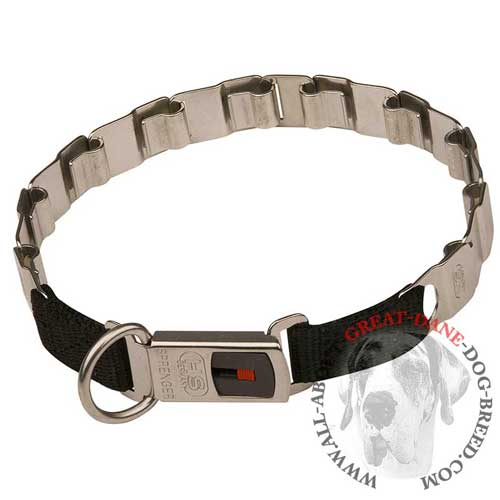 Reliable neck tech Great Dane collar with secure buckle