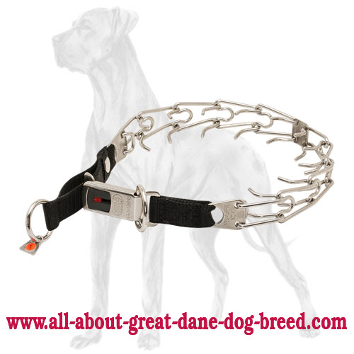 Easy fastening the Great Dane collar due to click lock  buckle