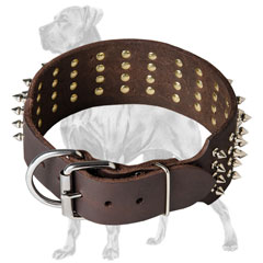 Quality Great Dane collar with nickel fittings