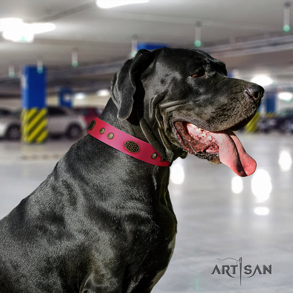 Great Dane perfect fit collar with unusual decorations for your doggie