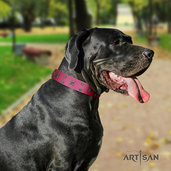 Great Dane handy use natural leather collar with adornments for your pet