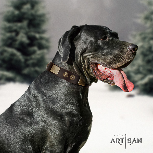 Great Dane handy use full grain natural leather collar with embellishments for your dog
