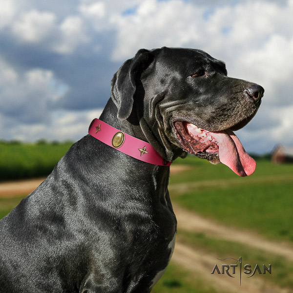 Great Dane comfy wearing full grain genuine leather collar with decorations for your canine