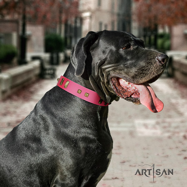 Great Dane walking full grain leather collar with decorations for your canine