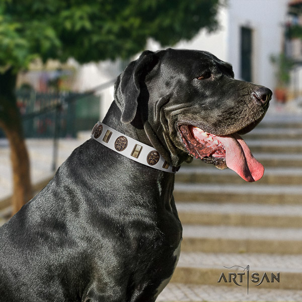 Great Dane easy wearing full grain leather collar with decorations for your dog