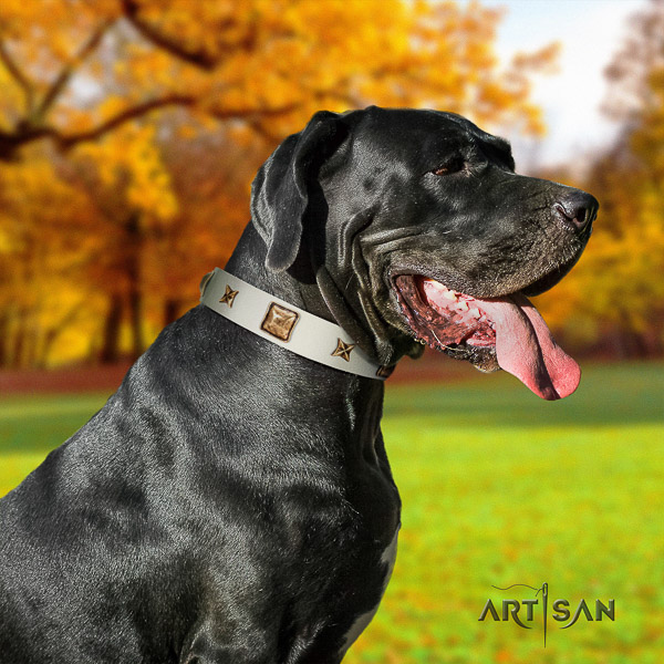 Great Dane comfortable wearing full grain natural leather collar with adornments for your canine