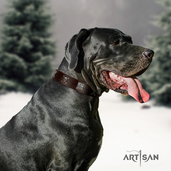 Great Dane easy wearing full grain leather collar with studs for your four-legged friend
