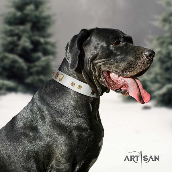 Great Dane fancy walking genuine leather collar with adornments for your dog