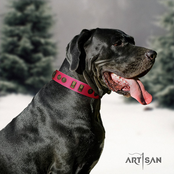Great Dane adjustable collar with exceptional adornments for your dog