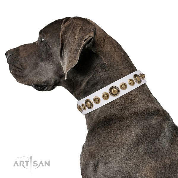 Great Dane convenient full grain genuine leather dog collar for handy use