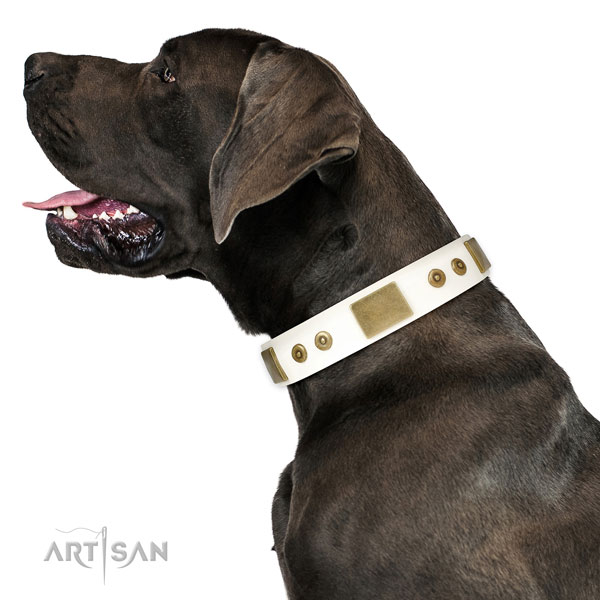 Great Dane convenient genuine leather dog collar for daily walking