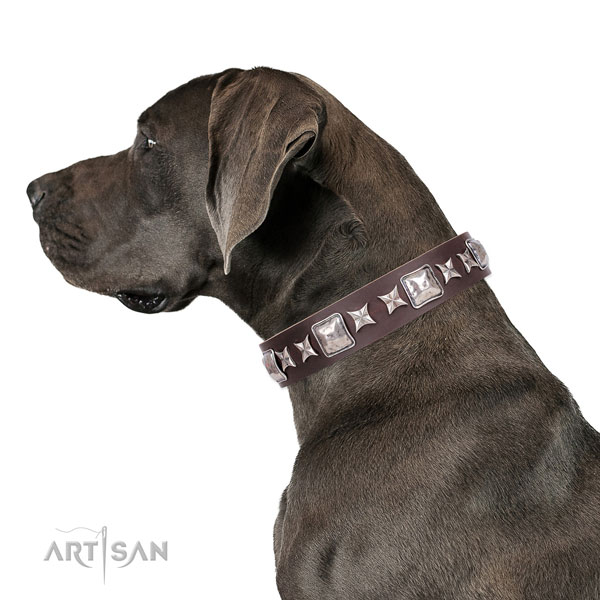 Great Dane handmade leather dog collar for handy use
