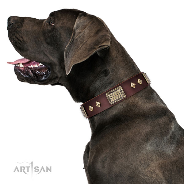 Great Dane easy adjustable genuine leather dog collar for daily walking