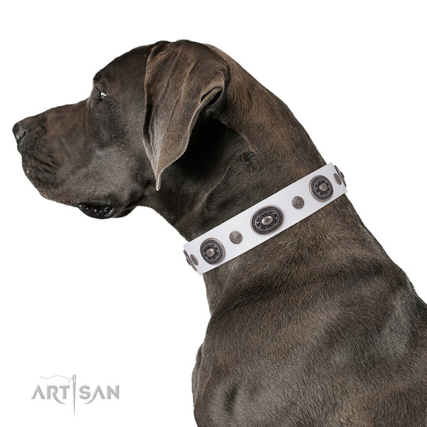 Great Dane fashionable leather dog collar for comfortable wearing
