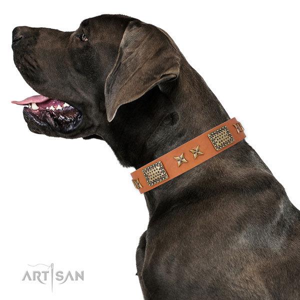 Great Dane handmade full grain genuine leather dog collar for daily use