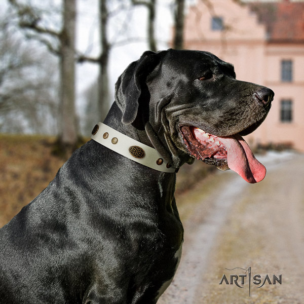 Great Dane best quality collar with stunning embellishments for your canine