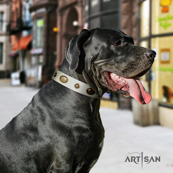 Great Dane easy to adjust collar with unusual adornments for your dog
