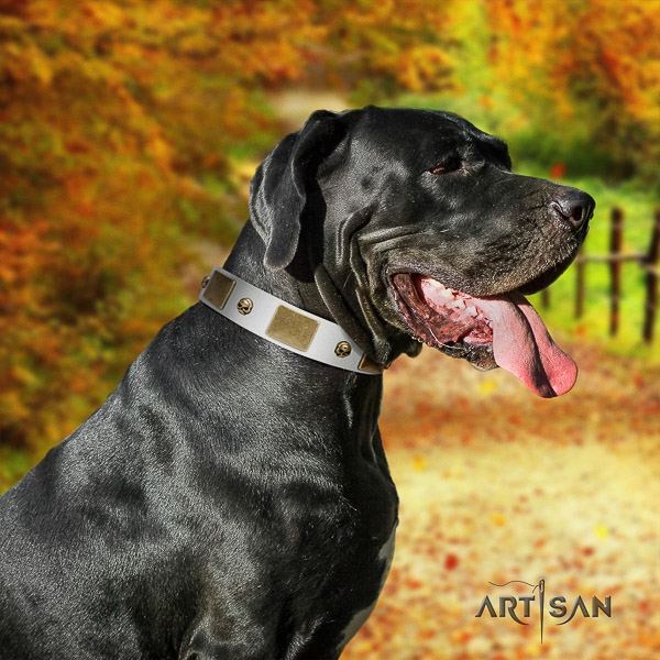 Great Dane comfortable wearing natural leather collar with decorations for your canine