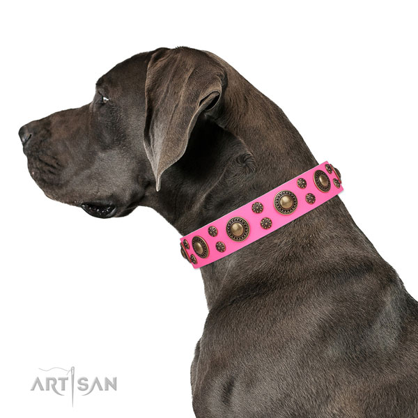 Great Dane stylish leather dog collar for easy wearing
