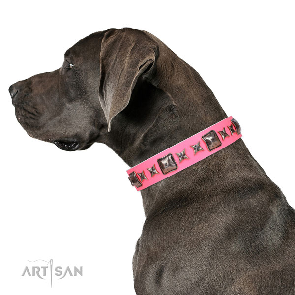 Great Dane fashionable genuine leather dog collar for everyday use