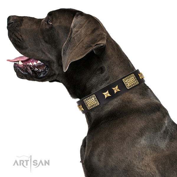 Great Dane unusual full grain leather dog collar for daily use