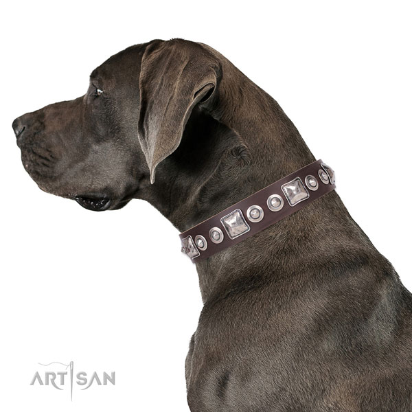 Great Dane embellished natural genuine leather dog collar for comfortable wearing