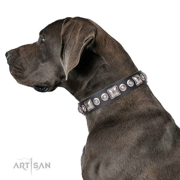 Great Dane adorned leather dog collar for handy use