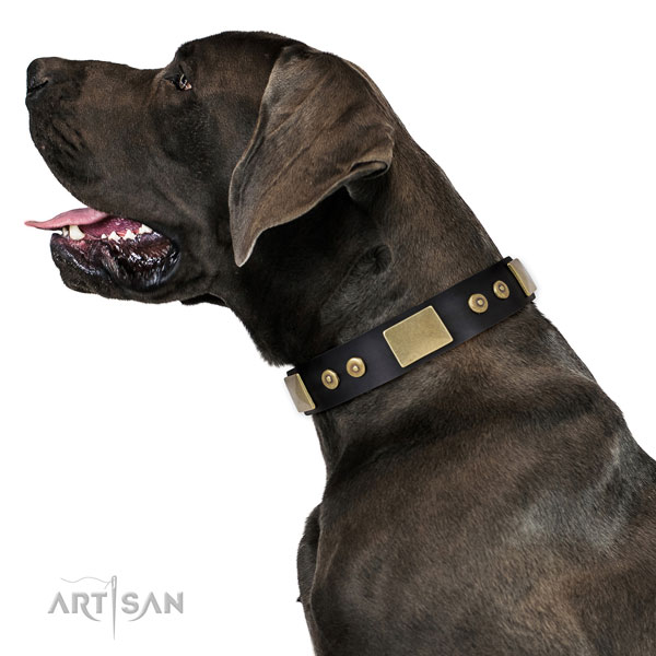 Great Dane amazing genuine leather dog collar for handy use
