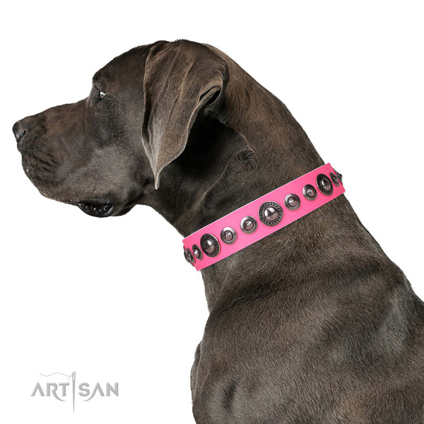 Great Dane stylish design natural genuine leather dog collar for fancy walking