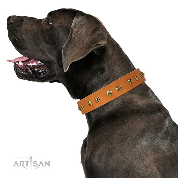 Great Dane fashionable natural genuine leather dog collar for comfy wearing