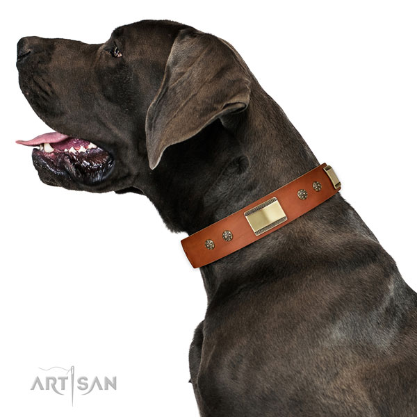 Great Dane decorated full grain leather dog collar for walking