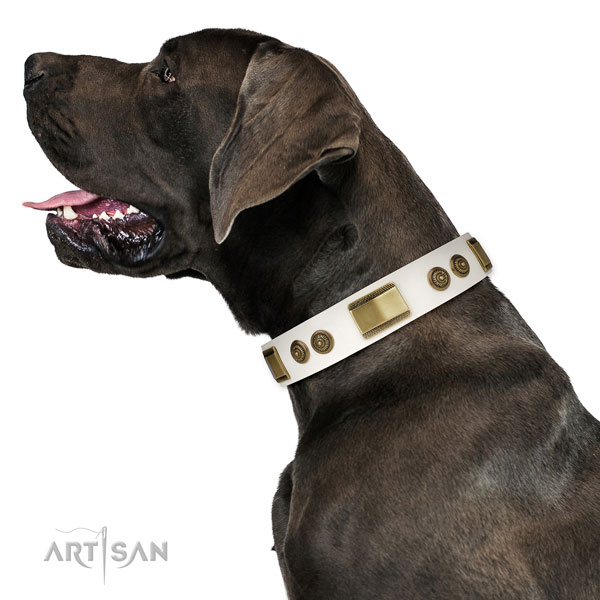 Great Dane unique full grain genuine leather dog collar for daily use