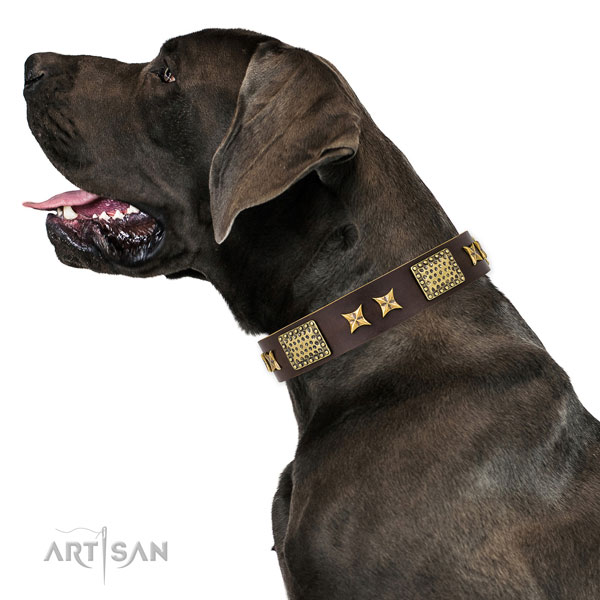 Great Dane easy adjustable full grain natural leather dog collar for everyday use