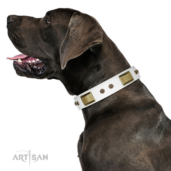 Great Dane inimitable full grain natural leather dog collar for handy use