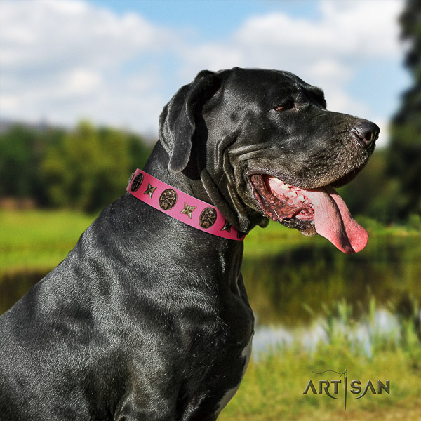 Great Dane easy wearing full grain leather collar with decorations for your pet