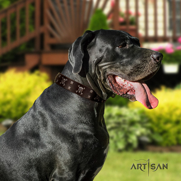 Great Dane fancy walking full grain natural leather collar with decorations for your doggie