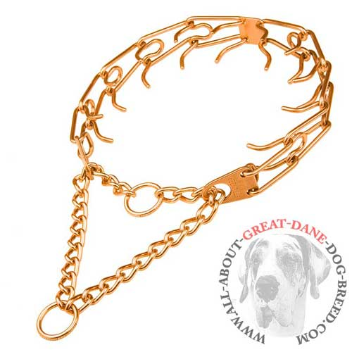 Great Dane pinch collar made of curogan