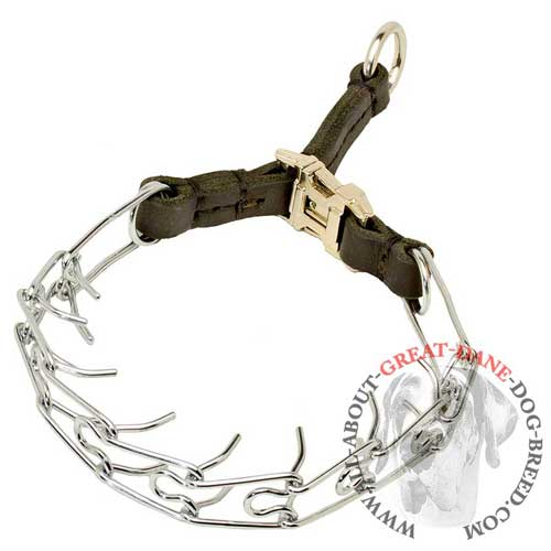Chrome plated Great Dane pinch collar