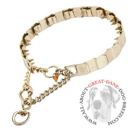 Great Dane reliable pinch collar with secure lock