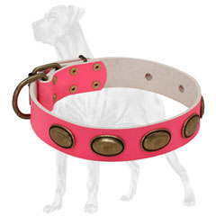Handcrafted Pink Leather Dog Collar