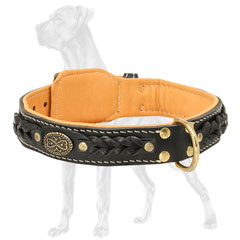 Dog Collar with Fur Protection Plate