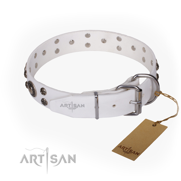 Durable leather collar for your gorgeous four-legged friend