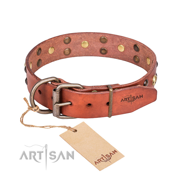Leather dog collar with thoroughly polished edges for convenient daily walking