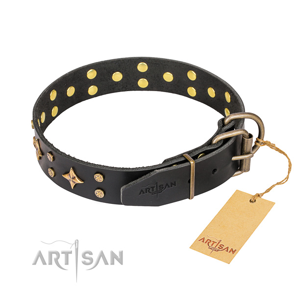 Everyday leather collar for your darling dog