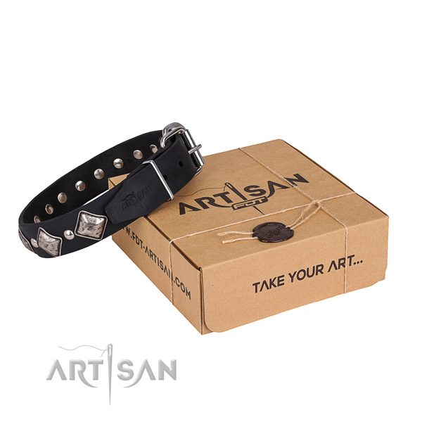 Casual leather dog collar with incredible decorations