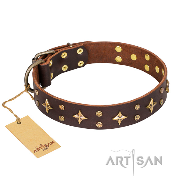 Resistant leather dog collar with corrosion-resistant details
